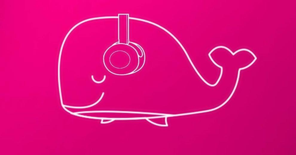 baleia-rosa-1-990x520